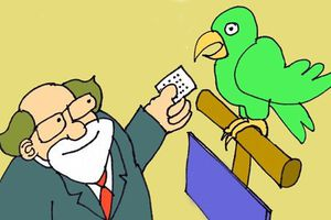 Tối cười: Nghệ thuật tự nâng giá của vẹt
