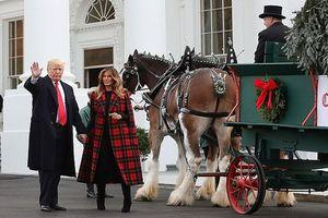 Bà Melania Trump mặc áo khoác 4.000 USD tay trong tay cùng chồng đón cây thông mùa Giáng sinh 2018