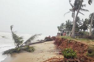Ấn Độ: Ít nhất 33 người thiệt mạng do cơn bão Gaja