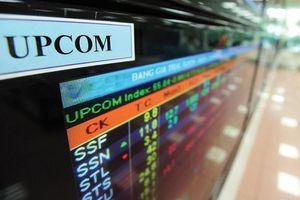 Vì sao 667 doanh nghiệp nhà nước cổ phần hóa nhưng chưa lên sàn chứng khoán?