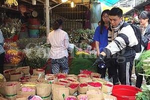 TP. Hồ Chí Minh: Sôi động thị trường hoa, quà tặng ngày 20/11