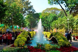 TP.HCM lên lịch Hội hoa xuân và chợ hoa Tết Nguyên Đán Kỷ Hợi 2019