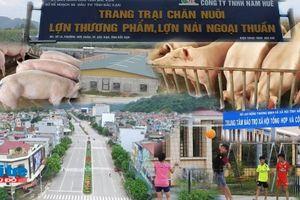 Trại chăn nuôi lợn trong lòng TP Bắc Kạn: Hàng trăm người dân không được tham vấn ý kiến!