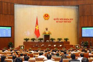 Dừng việc xây dựng dự án Luật Hành chính công