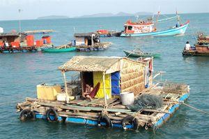 Xã đảo Tiên Hải vững bước xây dựng nông thôn mới