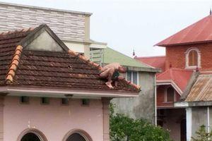 Giải cứu đứa trẻ bị bố cắp nách, nhảy trên mái nhà
