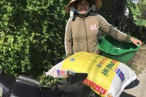 'Bà Thủy' và 'ông Thiên' đều chịu thua NPK Phú Mỹ công nghệ hóa học