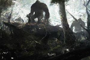 Những bí ẩn trong rừng rậm Amazone nay vẫn chưa được giải đáp