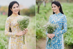 Hoa hậu Ngọc Hân đẹp mơ màng với áo dài bên cúc họa mi
