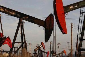 Giá dầu thế giới 21/11: Đồng loạt giảm mạnh từ 7 – 9%