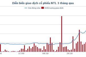 Đằng sau diễn biến tăng giá phi thường của cổ phiếu NTL