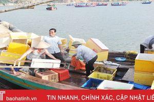 Do đâu sản lượng khai thác thủy hải sản ở Thạch Kim sụt giảm?