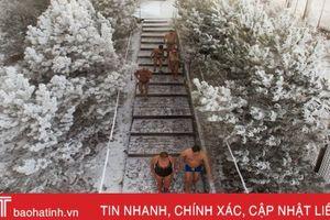 Lạnh âm độ, người dân Siberia vẫn kéo nhau đi bơi