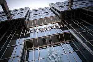 Mỹ ủng hộ ứng cử viên Hàn Quốc cho chức Chủ tịch Interpol
