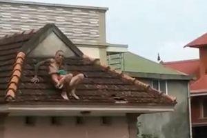 Vụ ném bé 1 tuổi từ trên mái nhà: Bé được đỡ kịp thời, nghi là con của đối tượng
