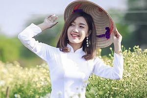 Ngắm dàn Hoa khôi sinh viên khoe dáng dịu dàng trong tà áo dài trắng bên vườn cúc họa mi 'đẹp như mơ'