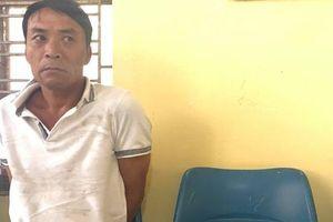 Vận chuyển 6kg ma túy về Hải Phòng tiêu thụ thì bị bắt