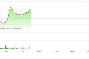 Chứng khoán sáng 21/11: Thanh khoản chậm lại, thị trường không hoảng sợ