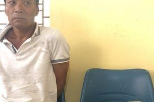 Hải Phòng: Chặt đứt đường dây mua bán ma túy số lượng lớn
