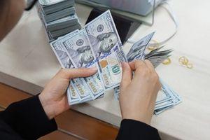 Tỷ giá giao dịch ổn định quanh mức 23.310 đồng/đô la