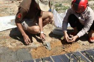 3 lão nông 'cắm' sổ đỏ xây nghĩa trang cho 'những thiên thần'