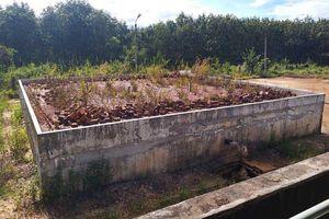 Công trình cấp nước hoang tàn, dân Đắk Tô khát nước sạch