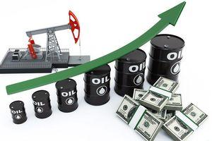 Giá dầu thế giới 22/11 phục hồi nhẹ sau thông dự trữ xăng của Mỹ giảm mạnh
