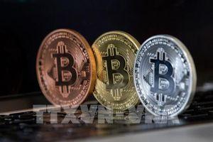 Bitcoin, trò chơi không dành cho những 'tay mơ' chậm chân