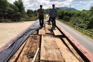 Xe tải đeo biển giả chở gỗ lậu