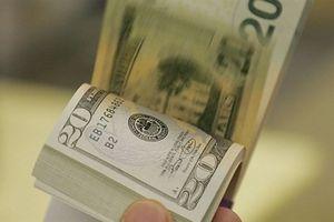 Tỷ giá ngoại tệ ngày 22/11: Giá USD trong nước tiếp tục tăng