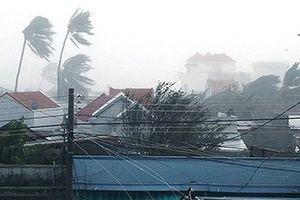 Bộ GDĐT gửi công điện hỏa tốc tới 25 tỉnh thành ứng phó với bão Usagi