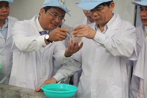 'Chìa khóa vàng' để tôm Việt Nam bước ra thế giới