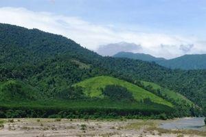 Giao đất rừng ở Hà Tĩnh còn nhiều bất cập