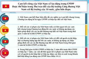 Cam kết chính về lao động của Việt Nam trong CPTPP