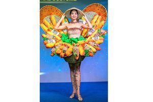 Trang phục dân tộc tại các cuộc thi sắc đẹp: Có nên giới hạn sáng tạo?