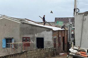 Người dân đảo Phú Quý căng mình chống bão số 9 sắp đổ bộ