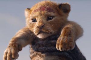 Chú sư tử Simba khiến cả thế giới như tan chảy trong trailer mới