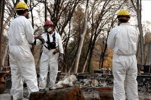 'Giặc lửa' tại California cơ bản được khống chế, nhưng số thương vong tiếp tục tăng