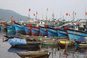 Cấm tàu thuyền xuất bến để đảm bảo an toàn trước bão số 9