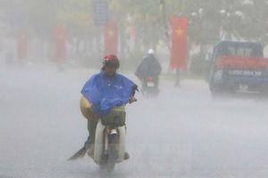 Đồng Nai, Bình Dương ra công điện khẩn ứng phó với bão số 9