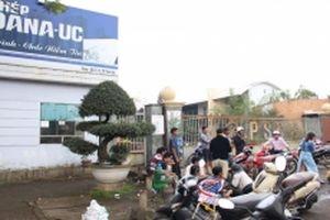 Phạt và đình chỉ hai nhà máy thép tại Đà Nẵng