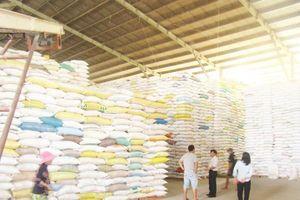 Nâng giá trị gia tăng của hạt gạo