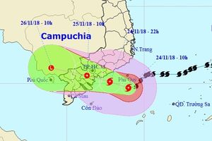 Bão số 9 giật cấp 12 áp sát Nam Bộ, TPHCM mưa lớn