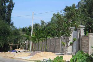 Chủ tịch tỉnh Bình Định chỉ đạo kiểm tra, xác minh thông tin Báo TN&MT phản ánh xây dựng trái phép trên tuyến đường ĐT639