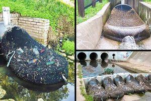 Tin tốt đẹp: Australia đã tìm ra cách đơn giản để ngăn tình trạng nước bị ô nhiễm nhựa