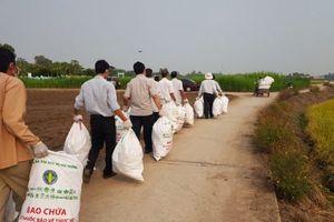 Hơn 60.000 kg bao bì thuốc bảo vệ thực vật đã được thu gom