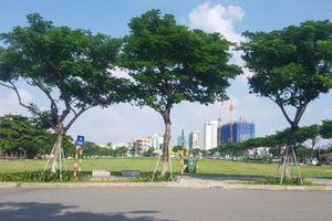 Đà Nẵng sẽ tổ chức đấu giá lại 8 lô đất