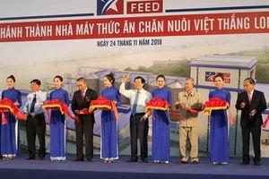 'Vua cá tra' Dương Ngọc Minh: Sẽ bù lỗ 100 tỷ đồng cho nhà máy Việt Thắng Long An đến 2020