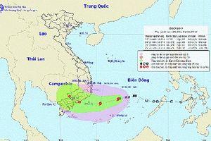 Chủ động đảm bảo an toàn khi bão số 9 đổ bộ gây ảnh hưởng, thiệt hại diện rộng