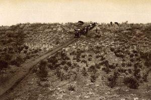 Thành phố bí ẩn trong hoang mạc Kalahari